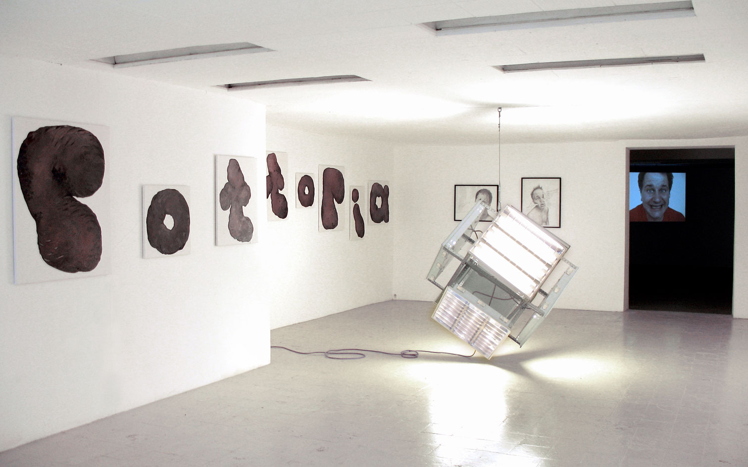 Les Schliesser – »Retrogard Avantspective«, mit Colin Cook, SMP Marseille, 2006
